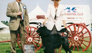 Best of Breed Alberta