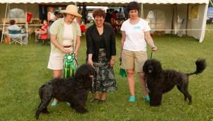 Schooner winner Veteran Sweeps with Roslyn, Judge Bev Jorgensen and BOS winner Sevenbeauty Nyssa with owner Jennifer Byers